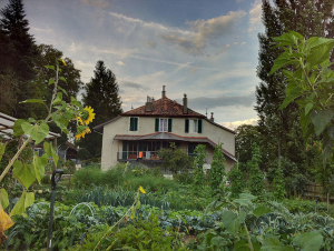 Domaine de Bois-Bougy - Bed & Breakfast
