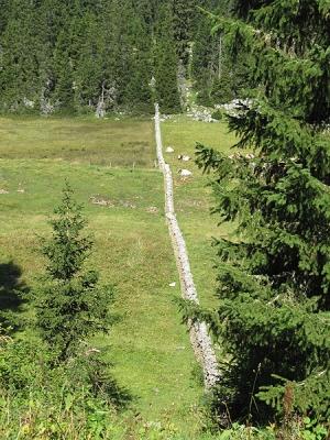 Parc Jura Vaudoise