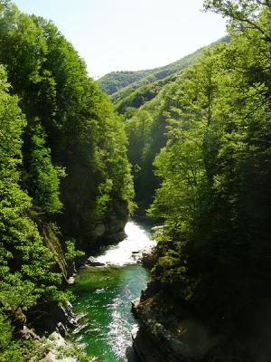 Isorno