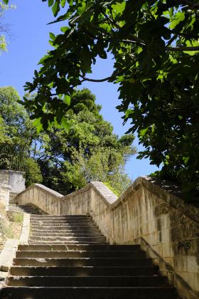 16. Juni 2019 / Tag 18 - Avignon