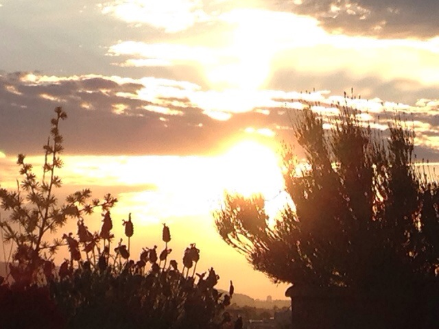 sunset@home
